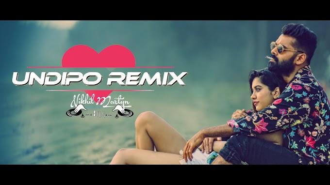 Undipo Remix | ISMART SHANKAR | Dj Nikhil Martyn