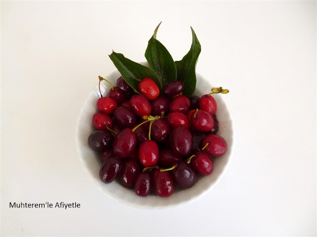 corneliancherry