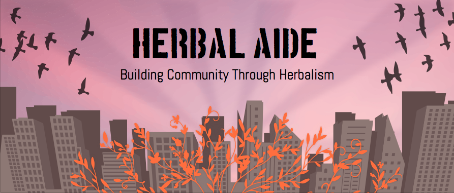 Building Community Through Herbalism