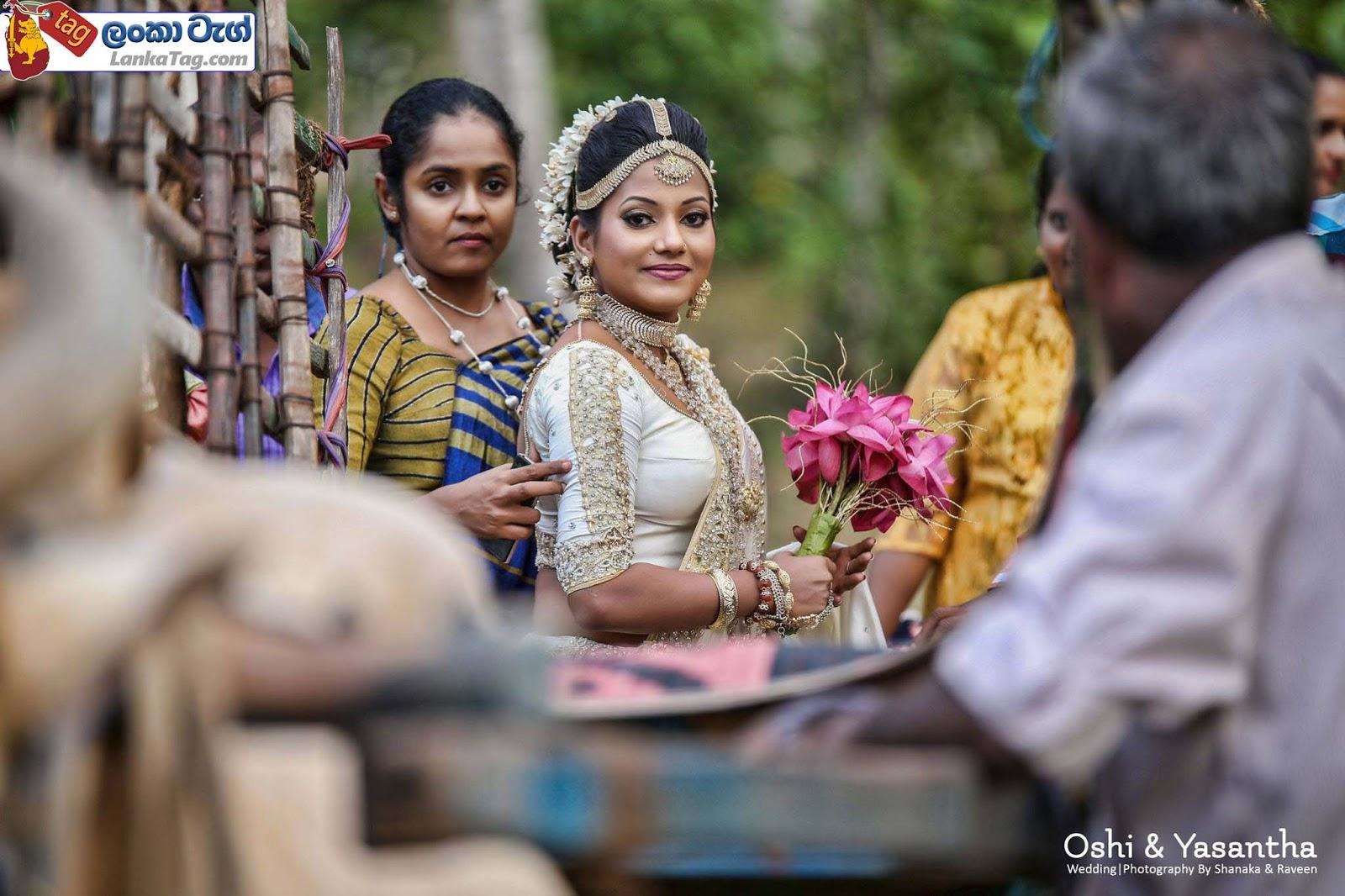 sri lankan wedding dress  19