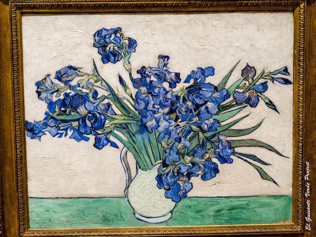Van Gogh, Lirios - MET, Nueva York por El Guisante Verde Project