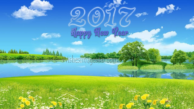 Happy New Year 2017 Nature Pictures Download For Desktop