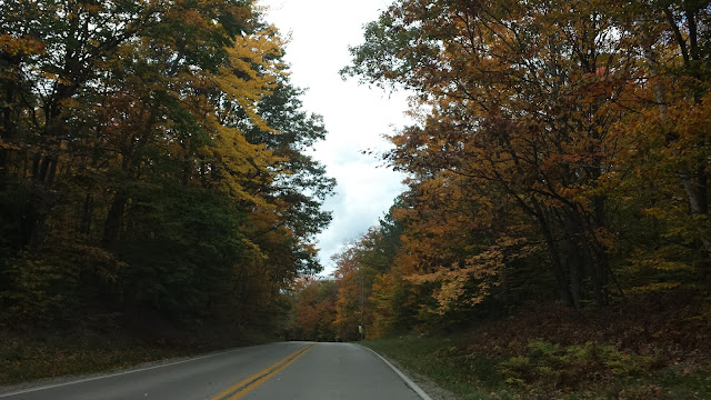 road route fall autumn automne trees tree arbres michigan