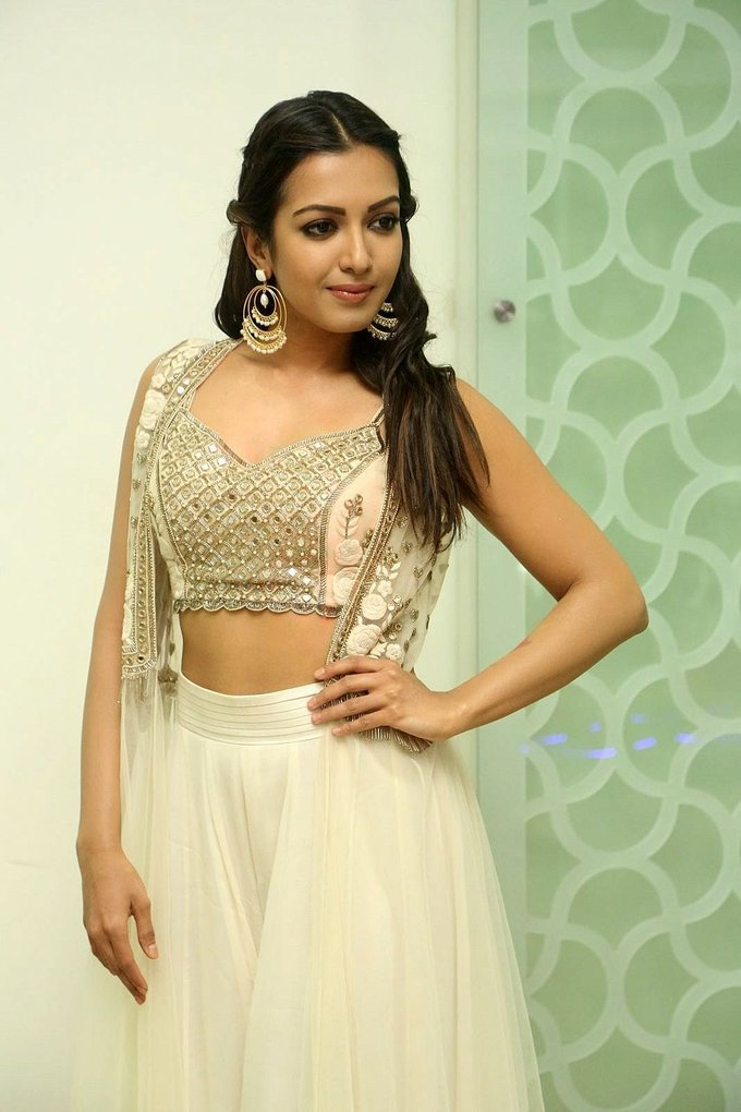 Catherine Tresa at Goutam Nandha Success Meet Event Photos