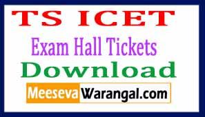 Telangana TS ICET Exam Hall Tickets Download 2017