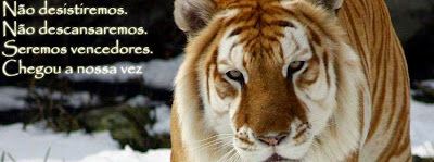 Capas exclusivas para Facebook - tigre