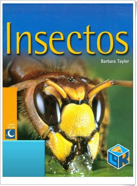 """""""Insectos"""" de Barbara Taylor"""