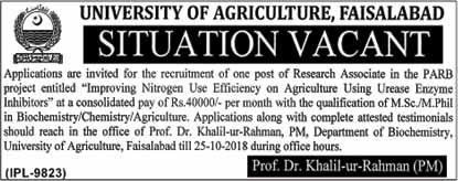 Govt Jobs in University of Agriculture Faisalabad, October 2018 Vacancies