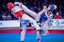 Materi Program Latihan Taekwondo | Zona Pelatih