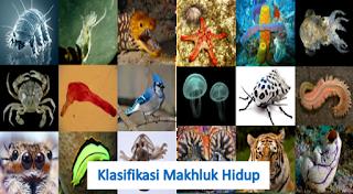 Permalink ke Klasifikasi Makhluk Hidup Dan Klarifikasi Sistem Penjabaran 5 Kingdom