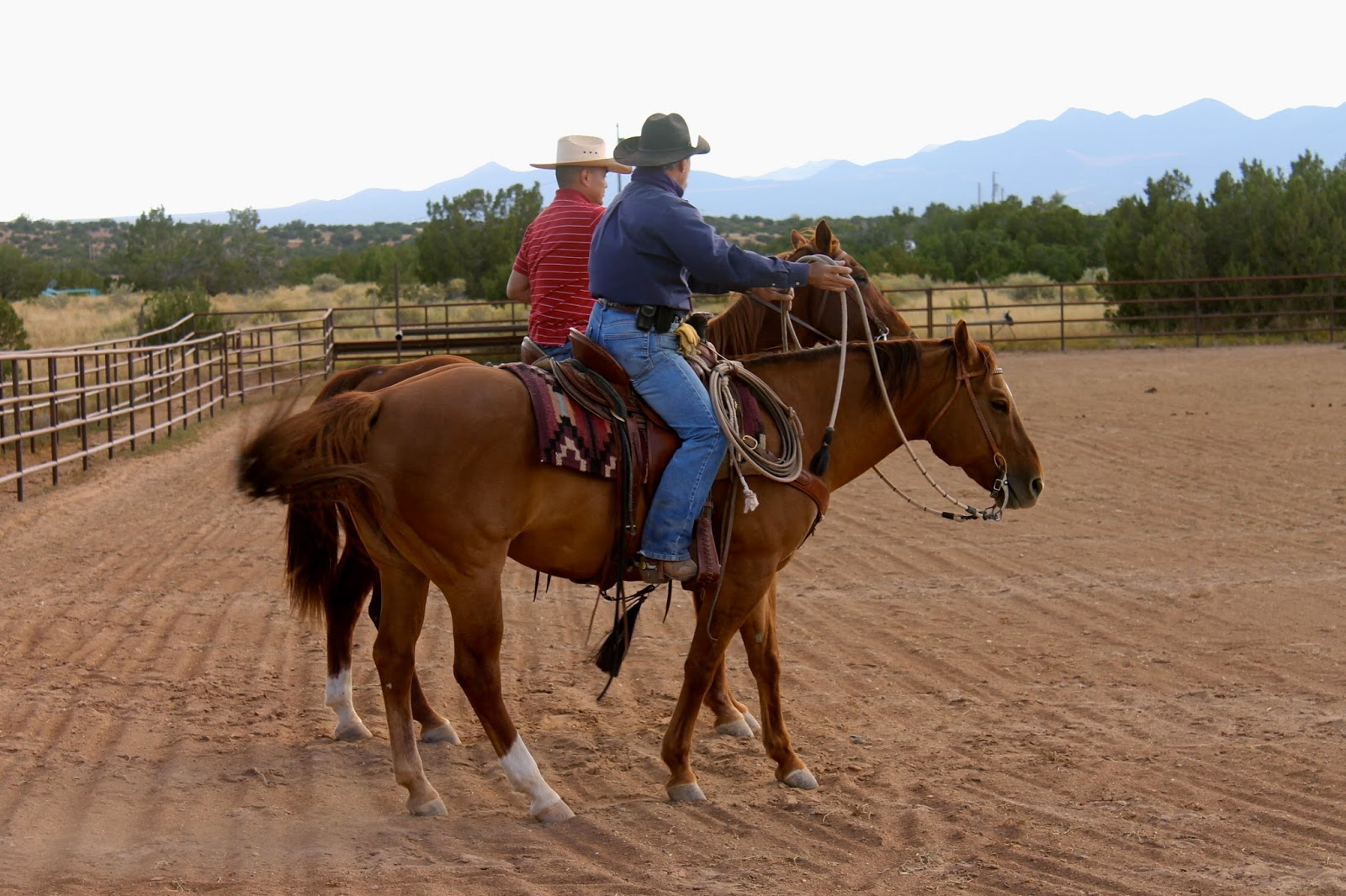 HORSES FOR HEROES New Mexico - Cowboy Up! 505-798-2535  October 2014 e7f66a90a