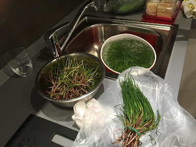 Preparing the agretti for cooking