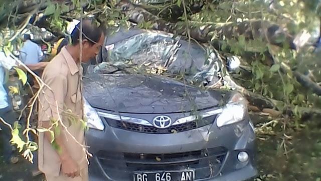 4 Pegawai Waskita Nyaris Tewas Tertimpa Pohon