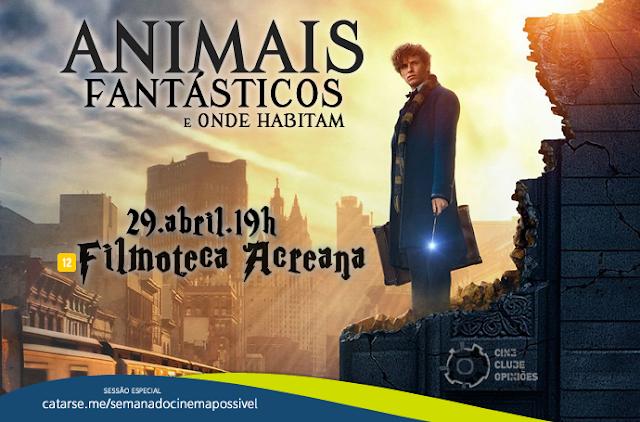 'Animais Fantásticos e Onde Habitam' no Cineclube Opiniões
