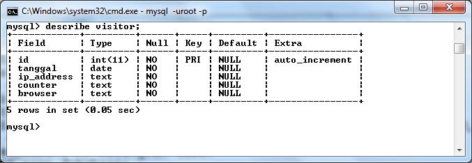 Membuat Visitor Counter dengan PHP dan MySQL