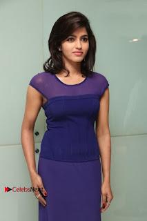 Tamil Actress Dhansika Stills in Purple Long Dress at Simba Audio Launch  0013.jpg