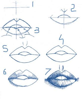 cara menggambar bibir