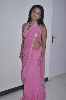 South Actress Hot Saree Photos