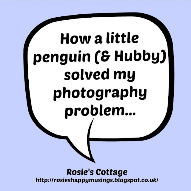 How A Little Penguin Fixed My Camera