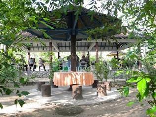 http://www.teluklove.com/2016/11/pesona-keindahan-wisata-monumen-hutan.html