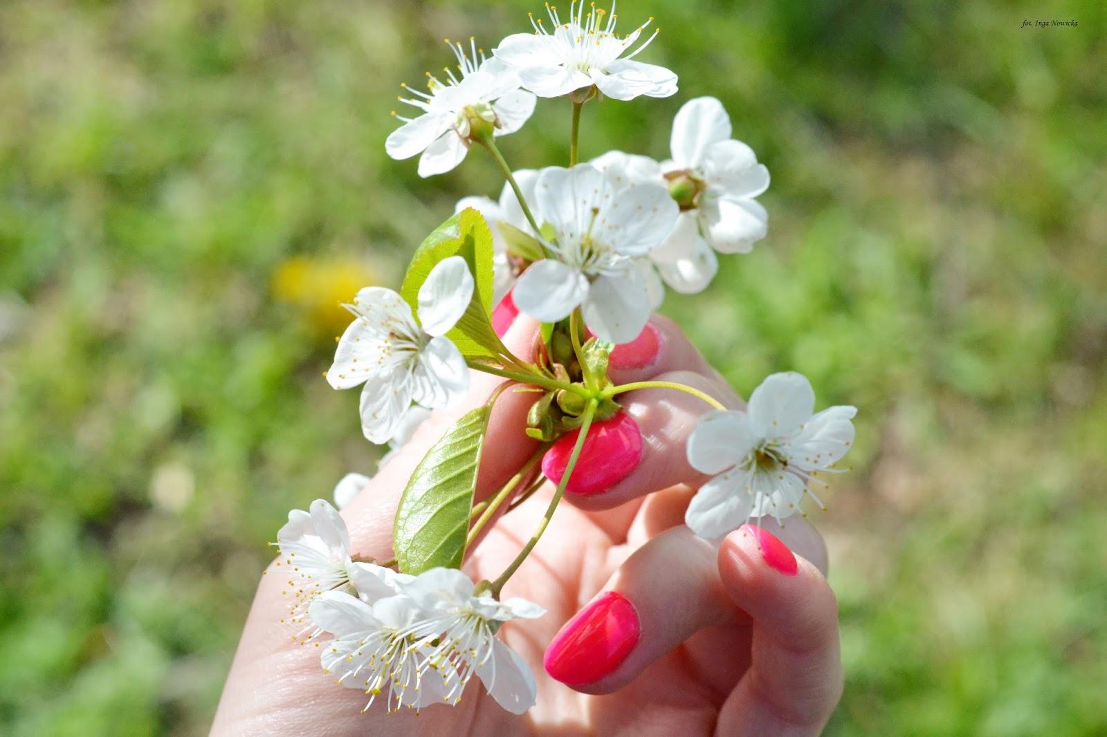 jakie paznokcie na wiosnę?