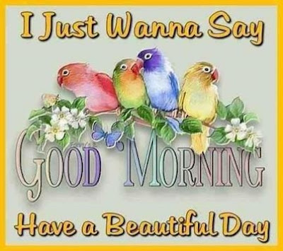 good-morning-have-a-beautiful-day- wishes-image