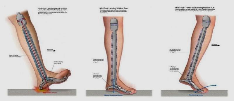 articulațiile doare în timpul alergării)