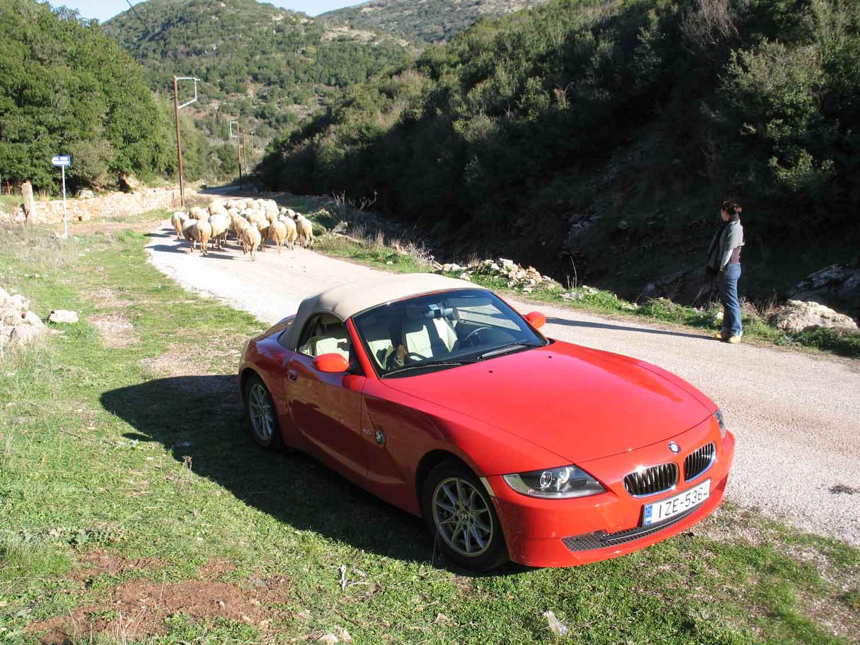 BMW Z4 2.0i pic15