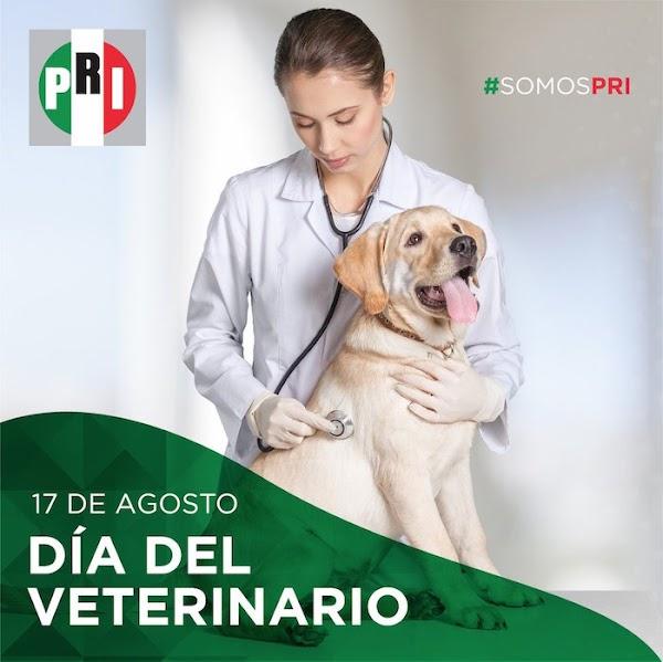 """""""¿Escucha con la nuca?"""": usuarios de redes se burlan de la felicitación del PRI a los veterinarios"""