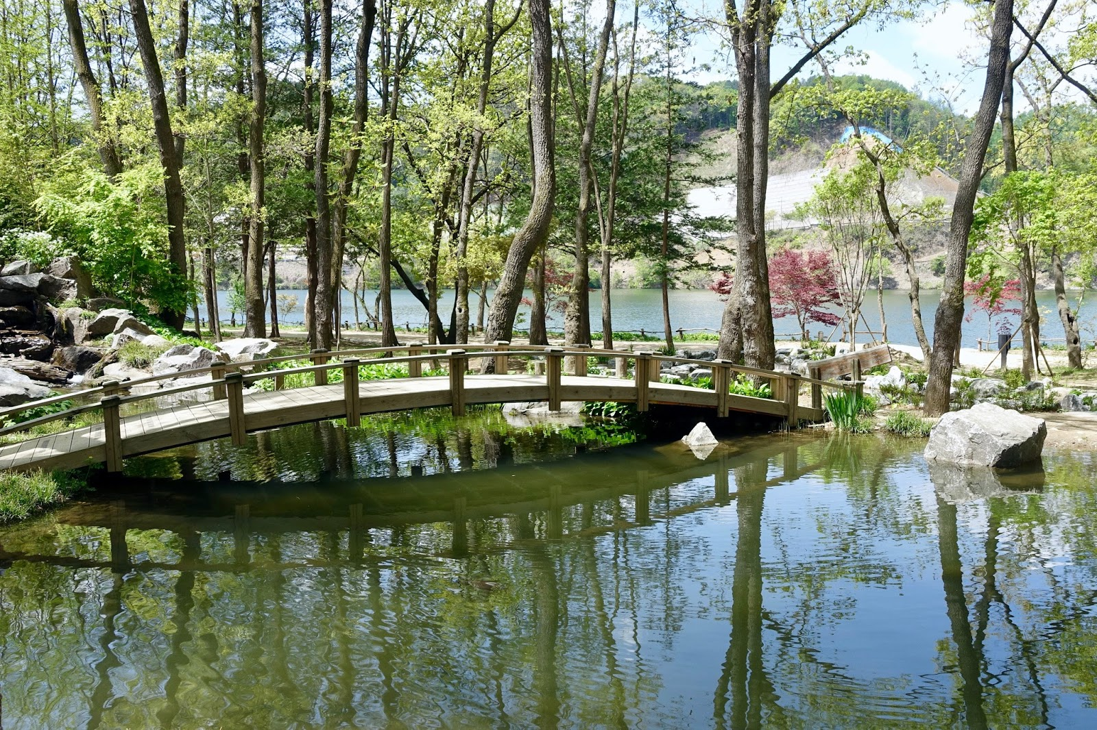 Nami Island Korea