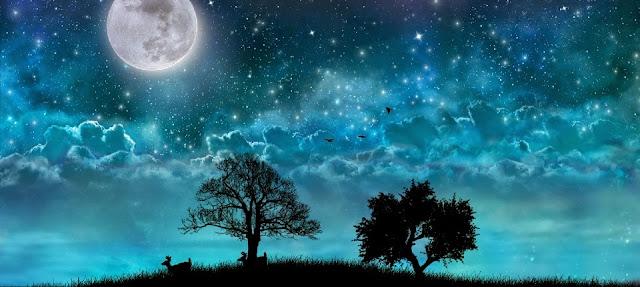 Dream Night Pro Live Wallpaper v1.5.6 Apk Miki