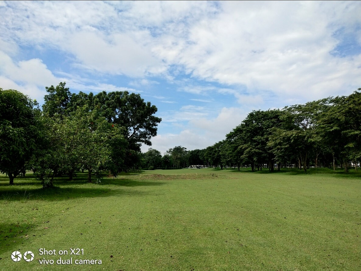 Vivo X21 Main Cameras Sample - Outdoor, Golf Fairway, Morning