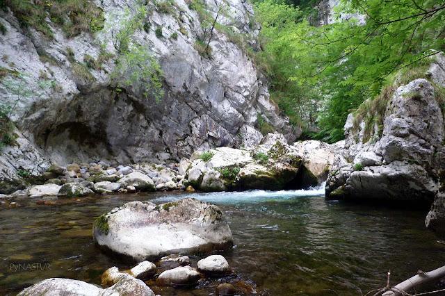 Río Ponga - Parque Natural de Ponga