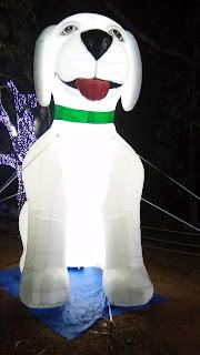 Jamshedpur Jubilee Park 3rd March Light Show jubli park