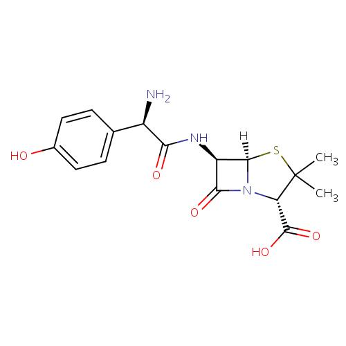 Amoxicillin / Amoksisilin