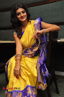 Model Tanishq Tiwari Pictures in Saree at Silk India Expo Curtain Raiser  0062