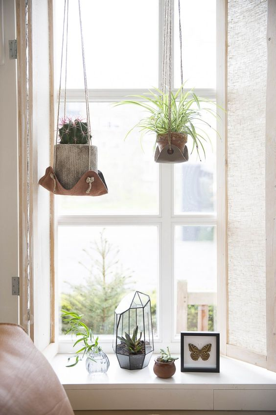 The first being the hanging of plants - I love this. Plants have made ...