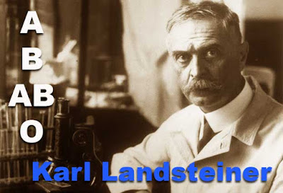 Biography of Karl Landsteiner inventor blood type