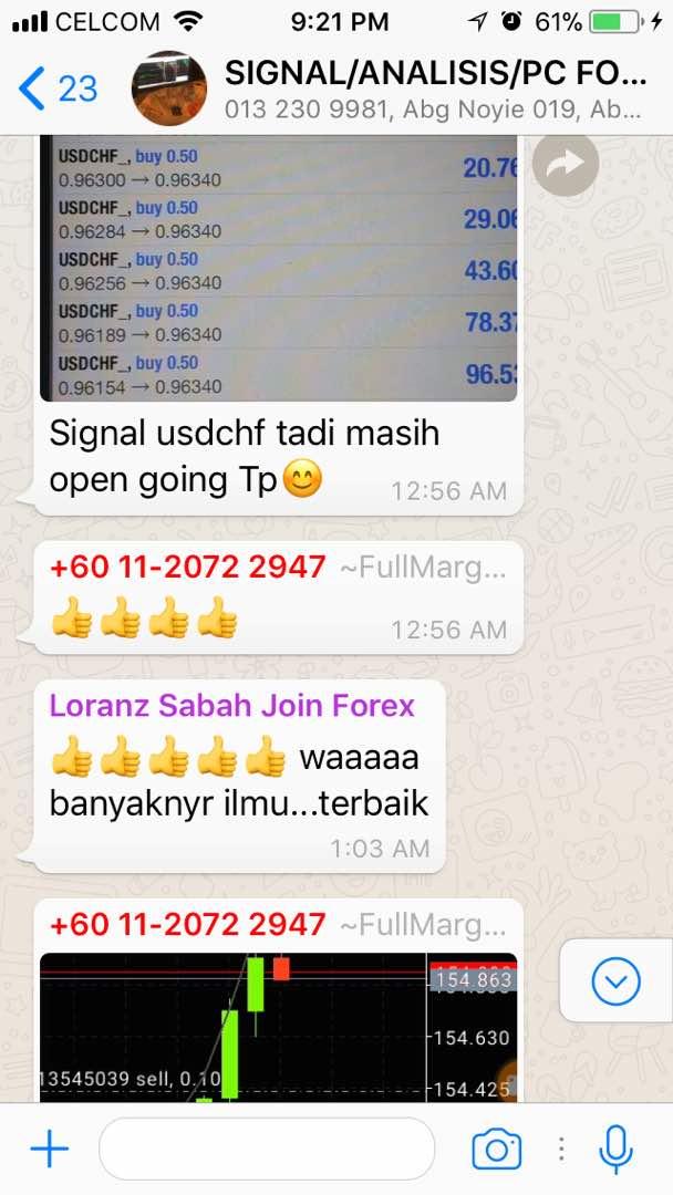 Whatsapp trading signals