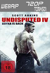Boyka: Undisputed IV (2016) WEBRip 720p