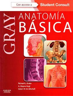 GRAY Anatomia Basica