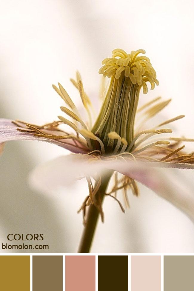 paletas_de_colores_23_inspiracion_primavera_6