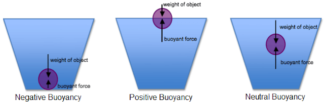 negative, neutral and positive buoyancy