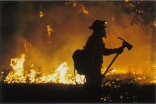 firefighter-profile.jpg