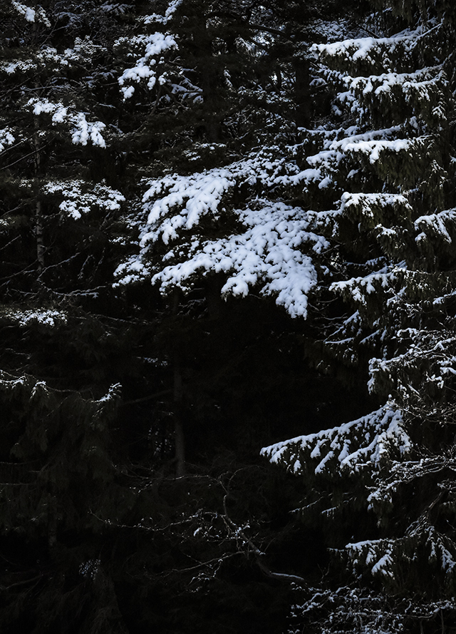 joulu,pikkujoulu,arthurs,lomatalo,mökki,cottage,finnish cottage,finland,suomi,lomamökki,kuusi,arkitunnelmia,sisustusblogi,sisustus,stailaus,porkkalanniemi,kirkkonummi,lomarengas,talvi,suomen talvi