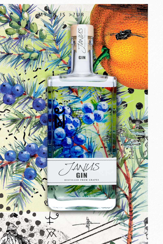 Janus Gin