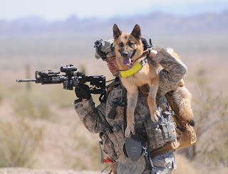 Being a hero is a two way street, let's be our dogs heroes as well