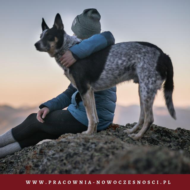 gadżety dla psa, do podróży