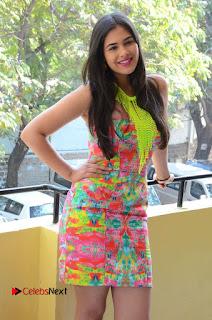 Telugu Actress Prasanna Stills in Short Dress at Inkenti Nuvve Cheppu Press Meet Stills  0047.JPG