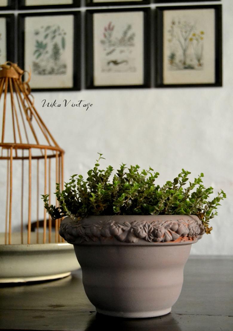 Prepara tu casa para la primavera, te daré unos cuantos tips estupendos para poner bonita tu casa